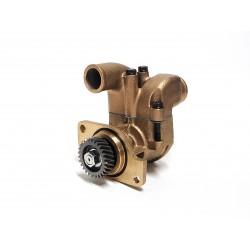 JMP Impeller pump YM06LPA